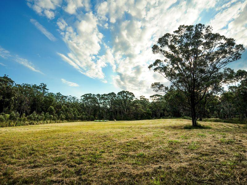 Lot 100 Royal Palm Drive, Sawtell, NSW 2452