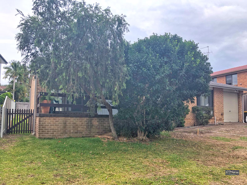 3 Trevally Street, Nelson Bay, NSW 2315