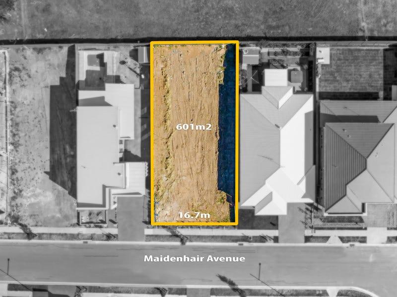 15 Maidenhair Avenue, Denham Court, NSW 2565