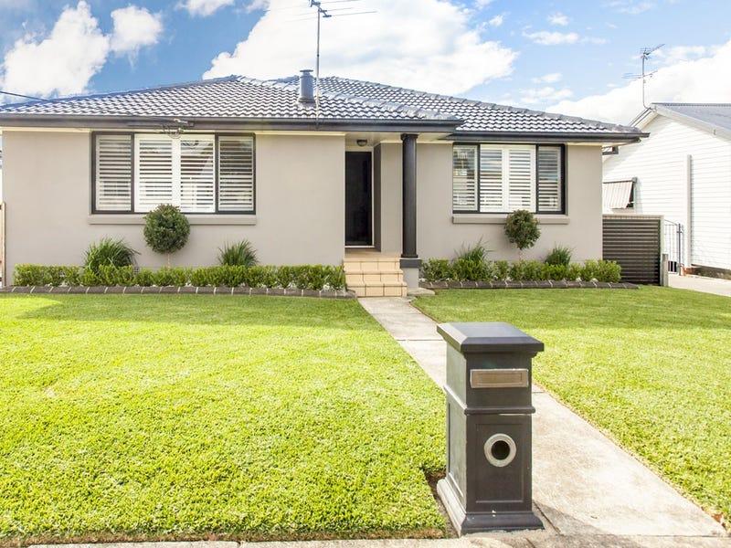 20 Weingartner Avenue, Tarro, NSW 2322