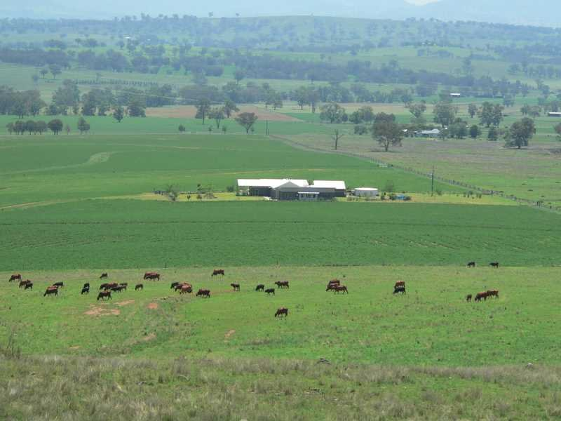 Bulls Knob, Loomberah, NSW 2340