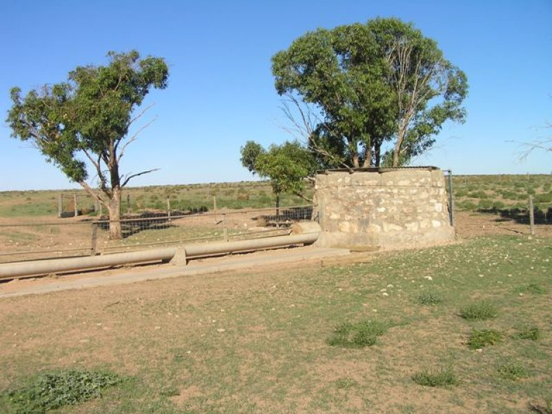 Address available on request, Wirrulla, SA 5661