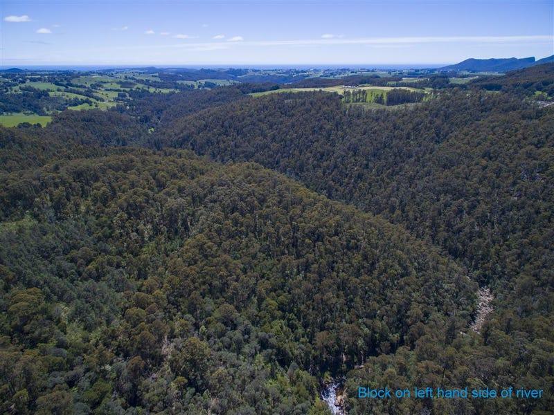Upper natone forest reserve