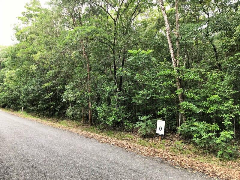 Lot 176 Quandong Road, Cow Bay, Daintree, Qld 4873