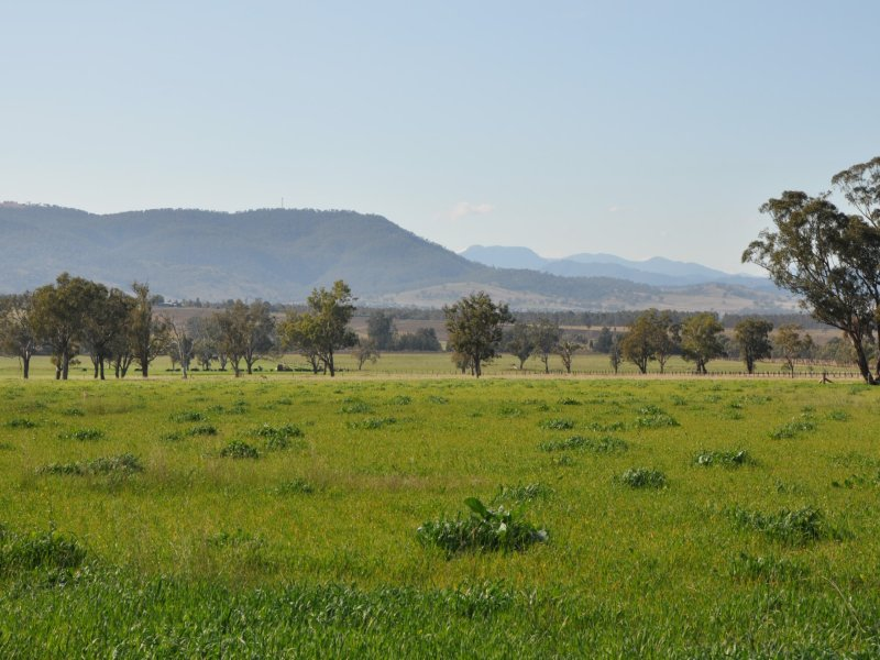"Lot 402 Nandowra Rd, ""Applegum"", Scone, NSW 2337"