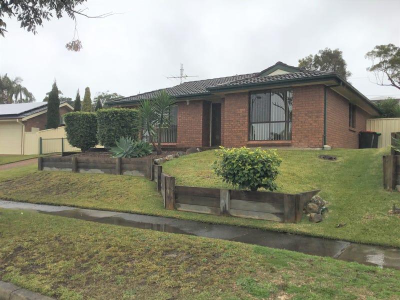 41 Kestral Avenue, Mount Hutton, NSW 2290
