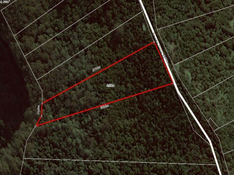 264 Repeater Station Road, Springbrook, Qld 4213