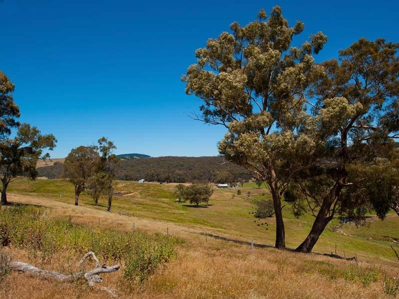Land 845 Green Gully Road, Porcupine Ridge, Vic 3461