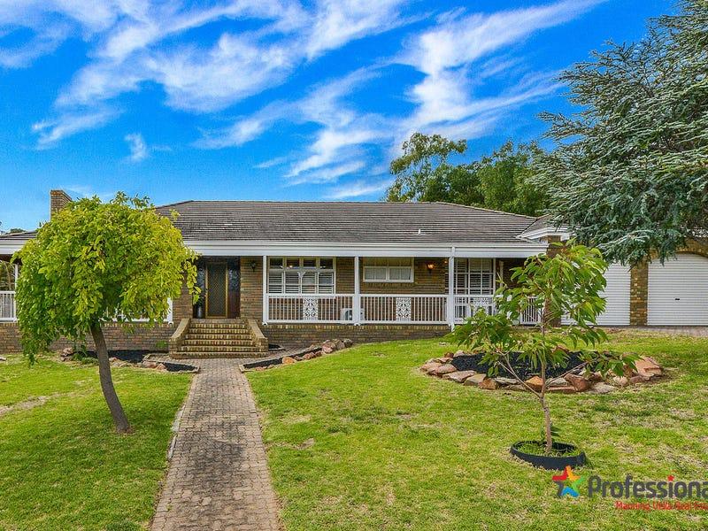 17 Pellew Avenue, Auldana, SA 5072