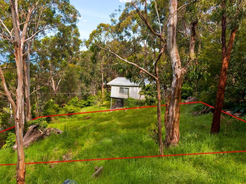 14 Cassidy Drive, Kennett River, Vic 3234