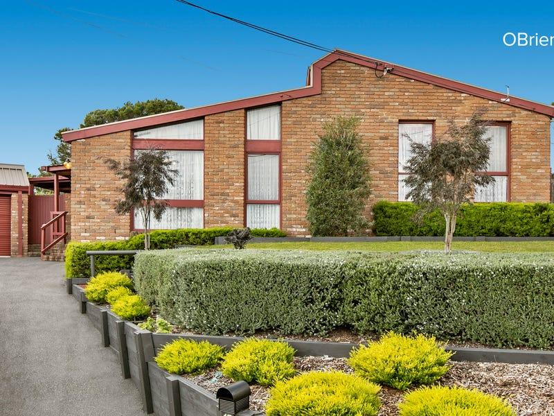 17 Yarrabee Court, Frankston, Vic 3199