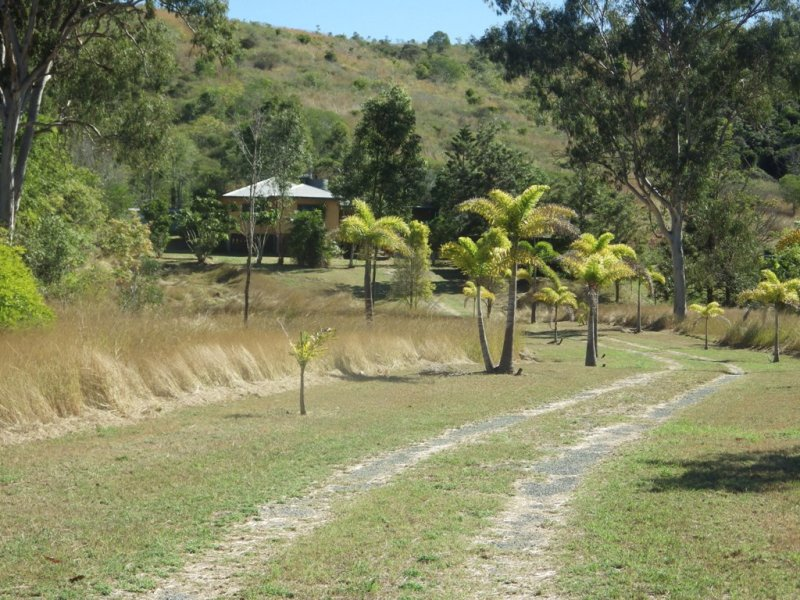 359 DARTS CREEK ROAD, Darts Creek, Qld 4695