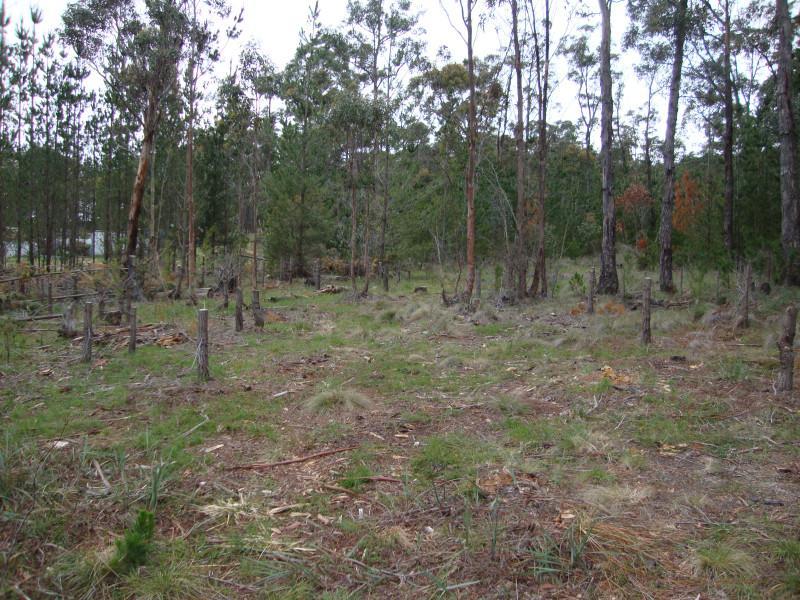 Lot 2 Ross Creek-Haddon Road, Ross Creek, Vic 3351