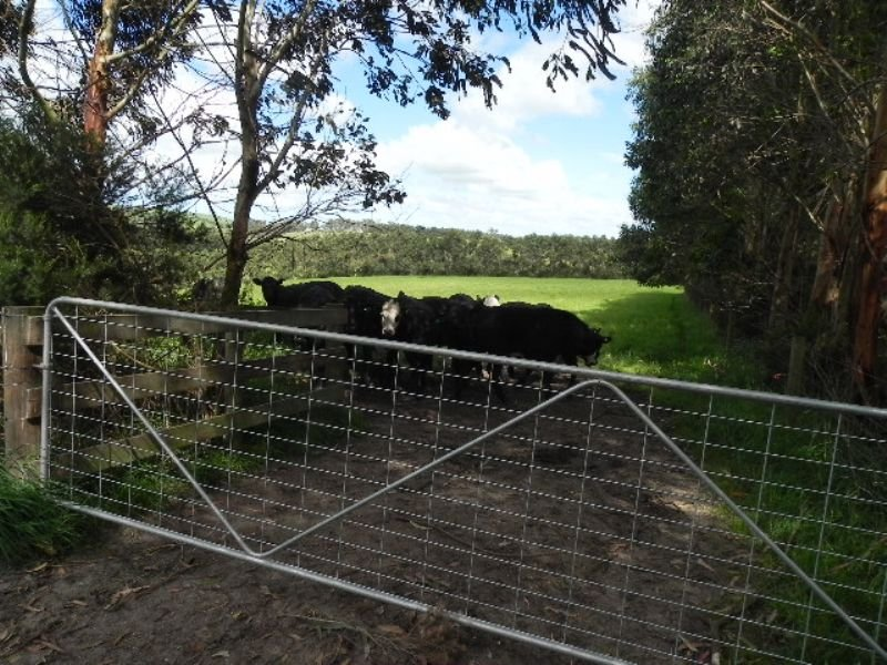 LOT 1 KERNOT ROAD, Kernot, Vic 3979