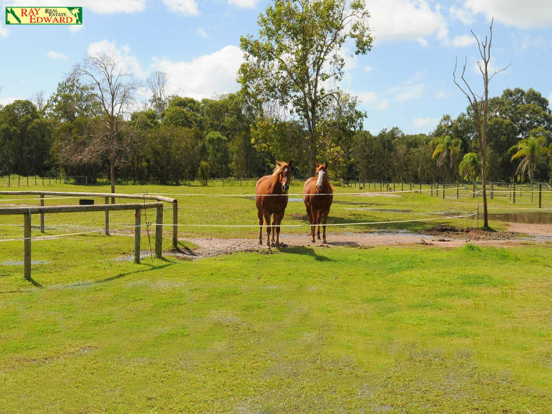 42 Straits Outlook, Craignish, Qld 4655