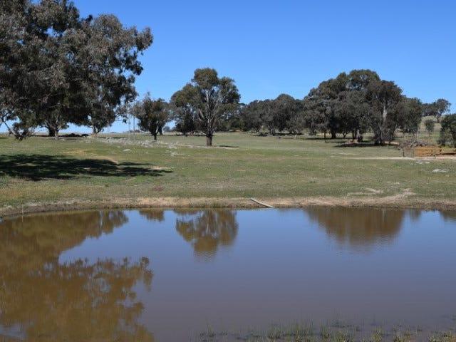 Lot 2, 98 Old Gap Road, Manton, NSW 2582