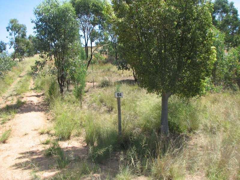 Lot 10 / 104 Lachlan Waters Road, Wyangala Dam, NSW 2808