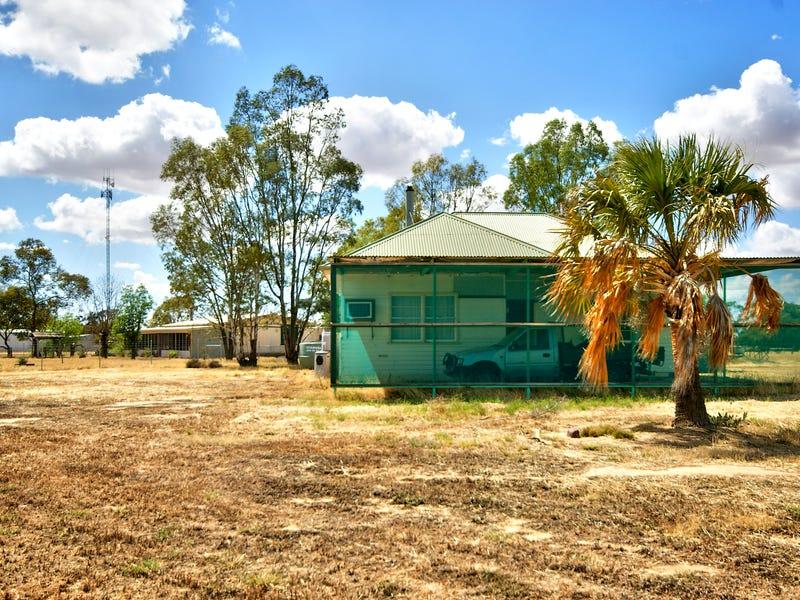 12 McKenzie St, Conargo, NSW 2710