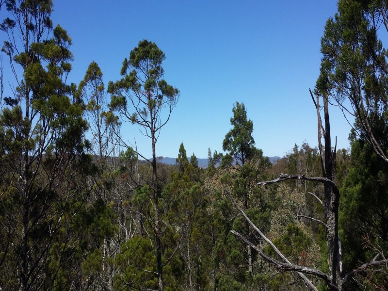 Lot 3, Yarrabee Lane Nundubbermere, Stanthorpe, Qld 4380