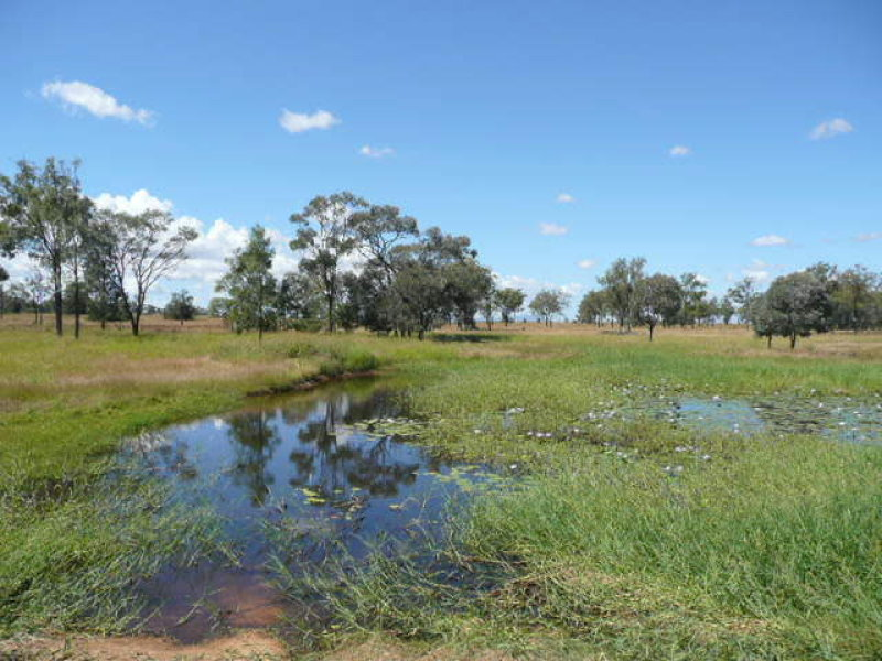 40ac Seymour Road, Ridgelands, Qld 4702