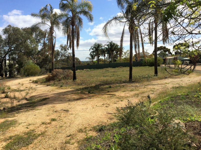 53 Murtho Road, Paringa, SA 5340