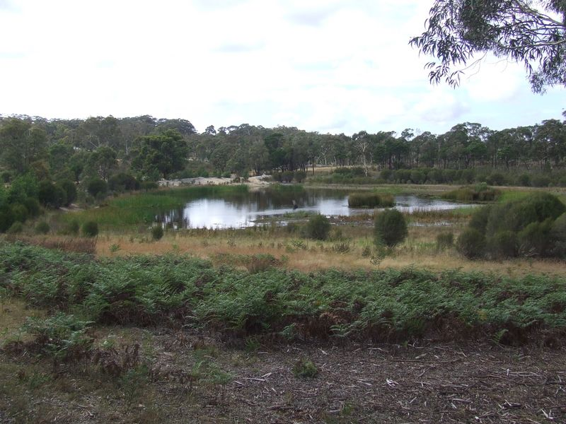 Lot 1 Oallen Ford Road, Windellama, NSW 2580