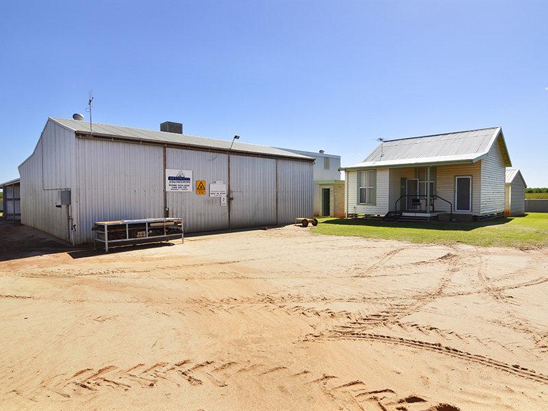 19 Pine Road, Gol Gol, NSW 2738