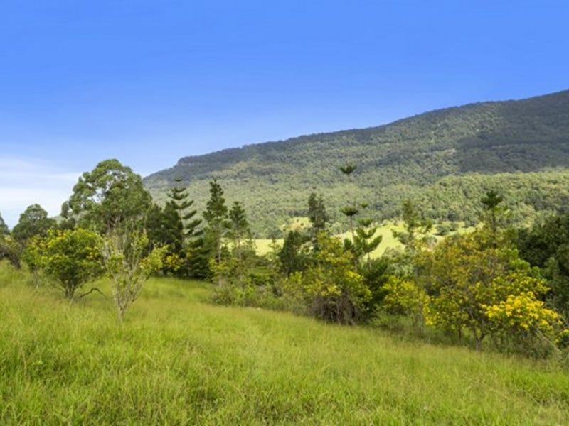 372 Limpinwood Valley Road, Limpinwood, NSW 2484