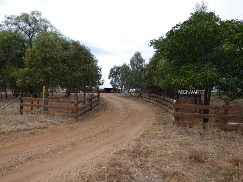 83 Nash's Lane, Cootamundra, NSW 2590