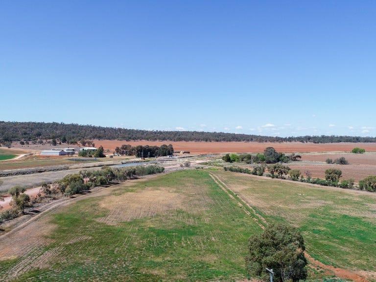 269 Apostle Yard Road, Leeton, NSW 2705