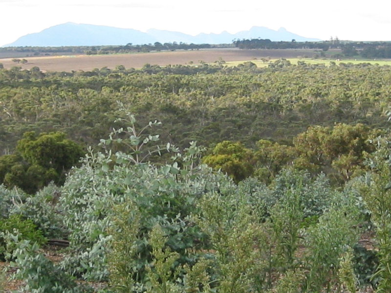 Lot 51 Granite Hill Road, Napier, WA 6330