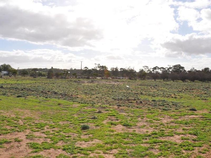 Section 183 Cadell Valley Road, Cadell, SA 5321