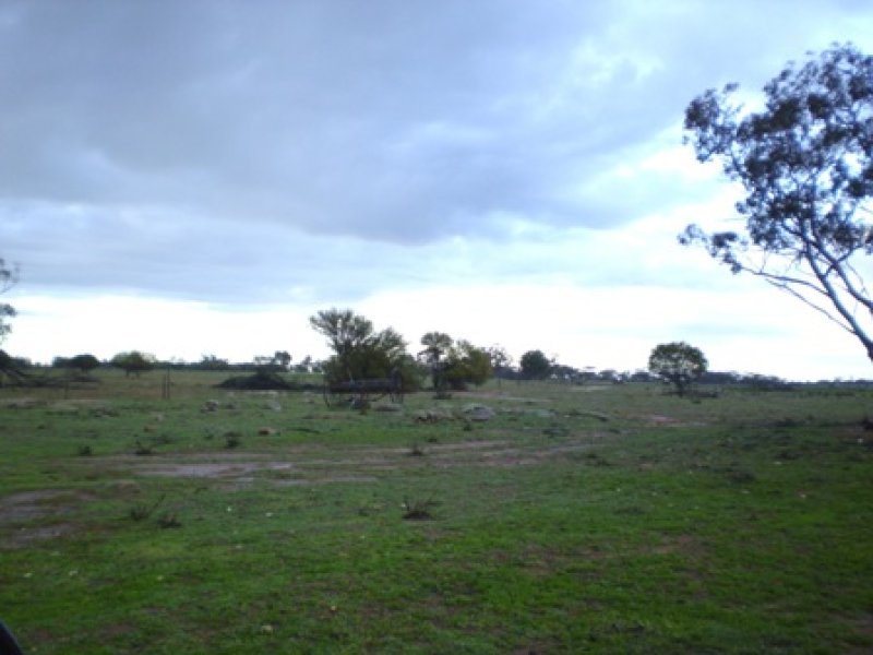 Lot 2 Cnr Moujakine and Thompson Roads, Trayning, WA 6488