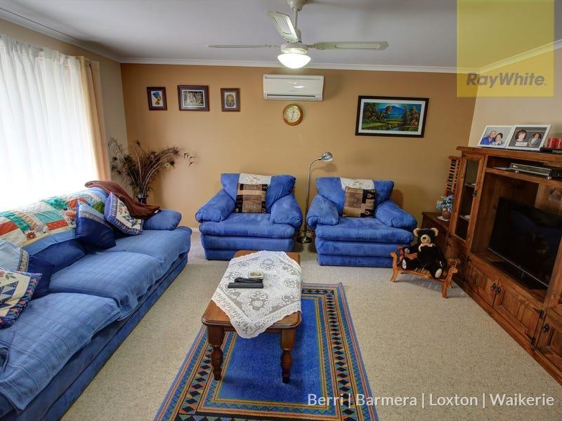 3 Ian Drive, Paringa, SA 5340