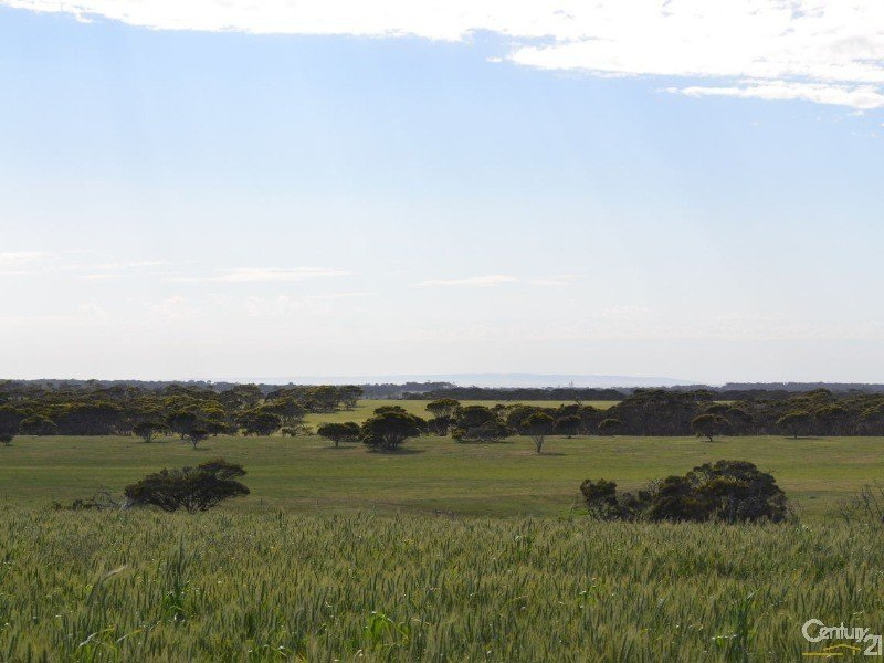 Lot 894 North Coast Road, Wisanger, SA 5223