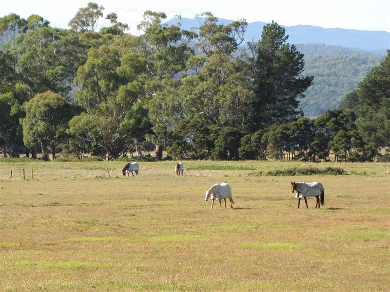 520 Gravelly Beach Road, Gravelly Beach, Tas 7276