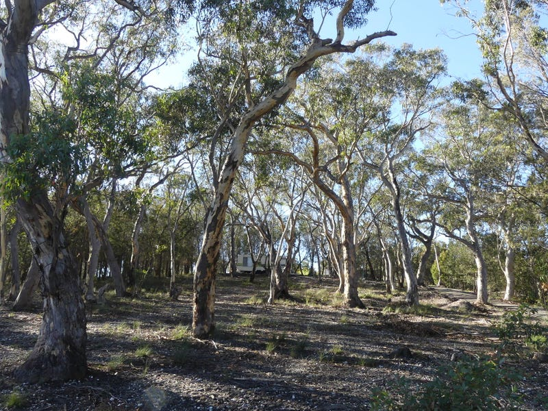 Lot 4 Caoura Road, Tallong, NSW 2579