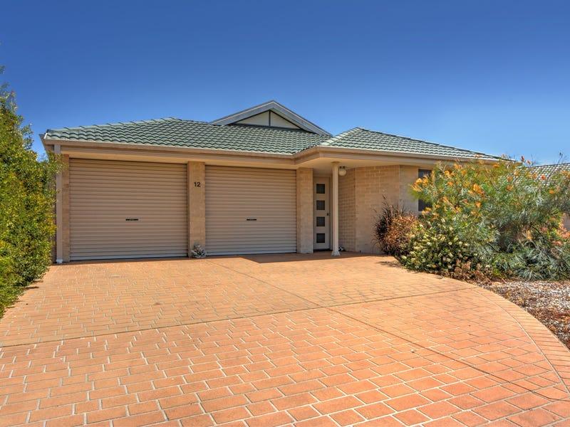12 Neptune Place, Worrigee, NSW 2540