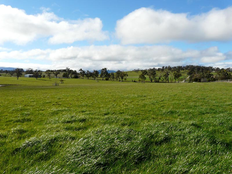 Address available on request, Coldstream, Vic 3770