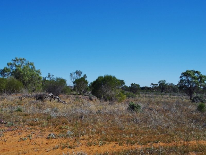 Lot 2 Story Avenue, Renmark, SA 5341