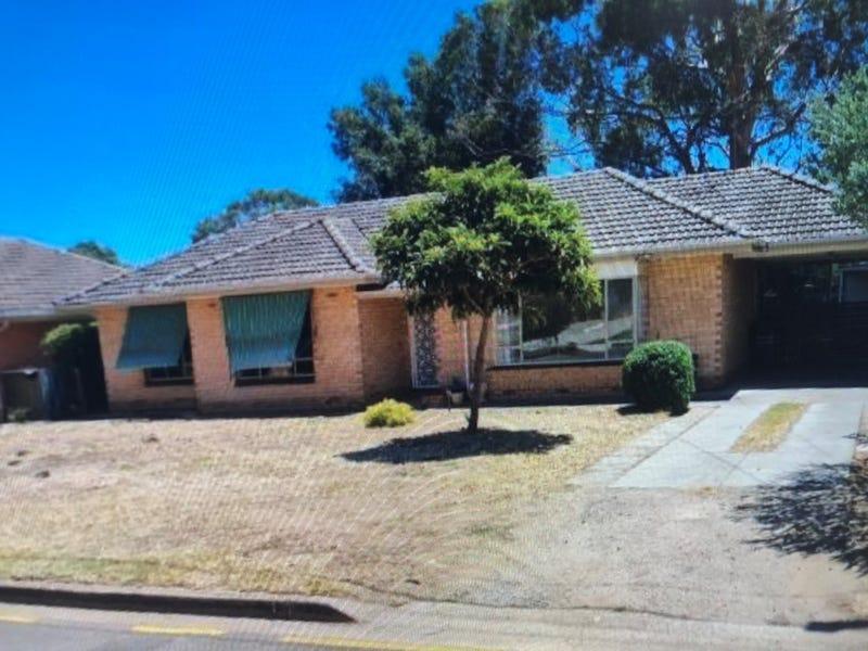 5 Woodmere Avenue, Paradise, SA 5075