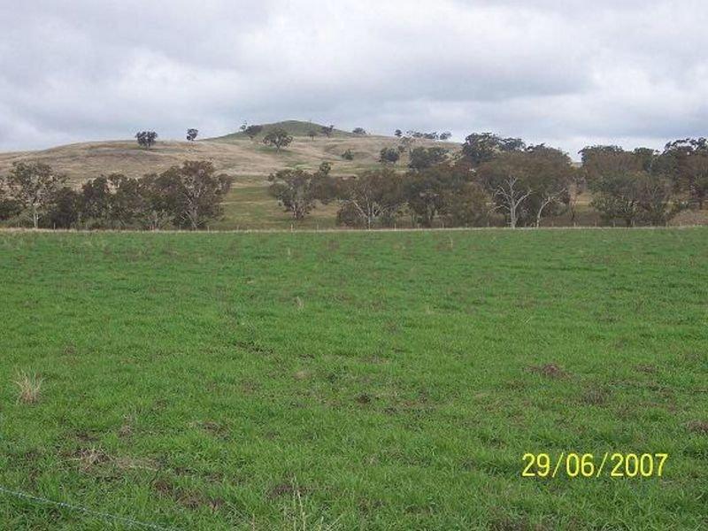 """TURILL CREEK', Cassilis, NSW 2329"