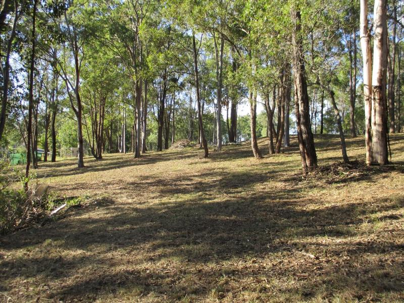 Lot 111, Lot 111 Trotter Road, Glenwood, Qld 4570