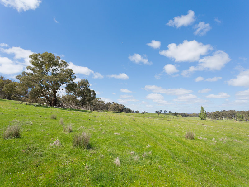 LOT 3, MUCKLEFORD GOWER LAND, Muckleford, Vic 3451