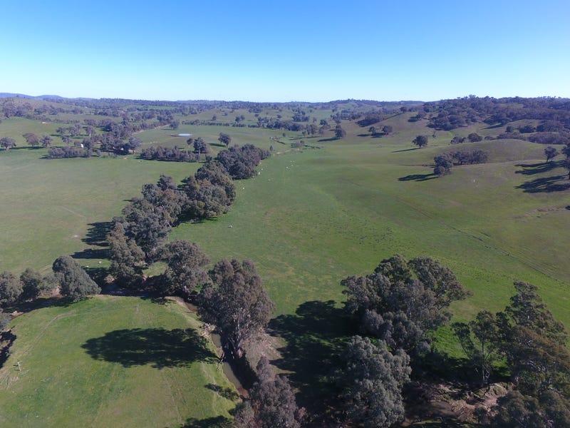 Jilliby, Humula, NSW 2652