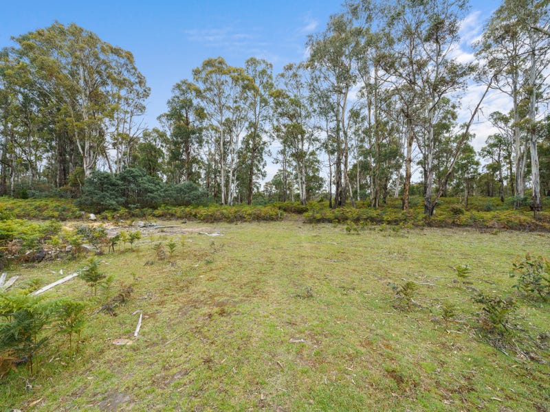 180 Pearces Road, Strickland, Tas 7140