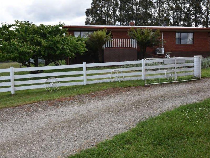 125 Wadleys Road, Reedy Marsh, Tas 7304