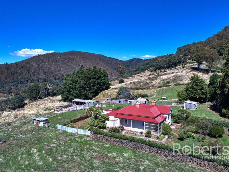 543 Mathinna Plains Road, Ringarooma, Tas 7263