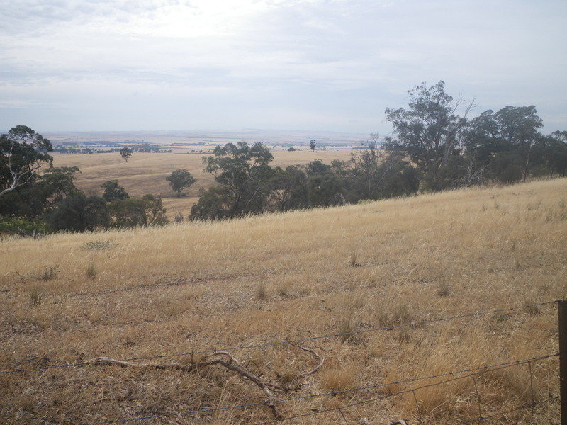 Laura Farming & Grazing, Laura, SA 5480