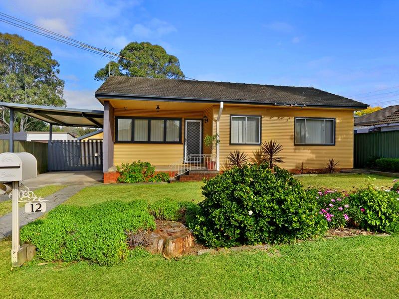 12 Portia Road, Toongabbie, NSW 2146
